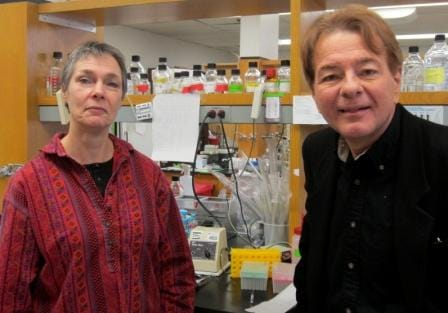 Drug-Resistant Leukemia Cells Can Be Eradicated By Cleaving Sugar