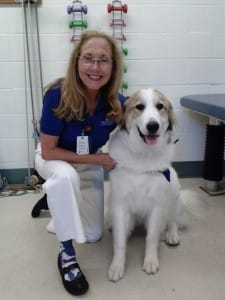 Lois and Her Dog Volunteer Experience