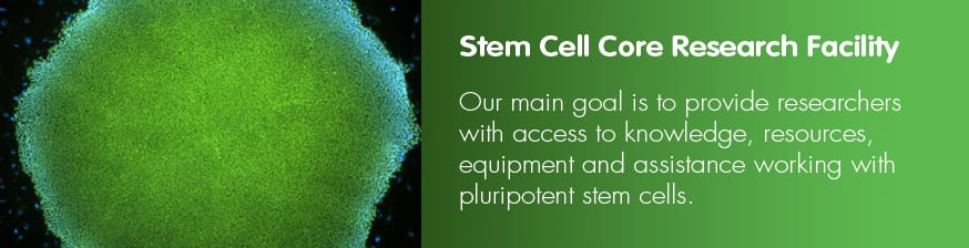 Stem Cell Core Research Facility