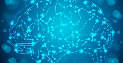 Brain wiring graphic.jpg