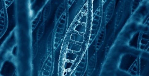 CHLA-3D-rendering-of-DNA.jpg