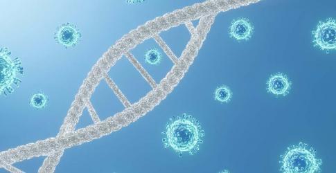 CHLA-Blog-Coronavirus-Mutation-1024x683-01.jpg