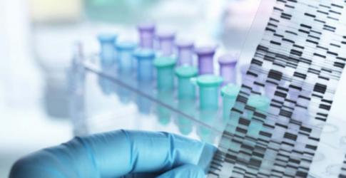 CHLA-DNA-Gel-and-Samples-01.jpg