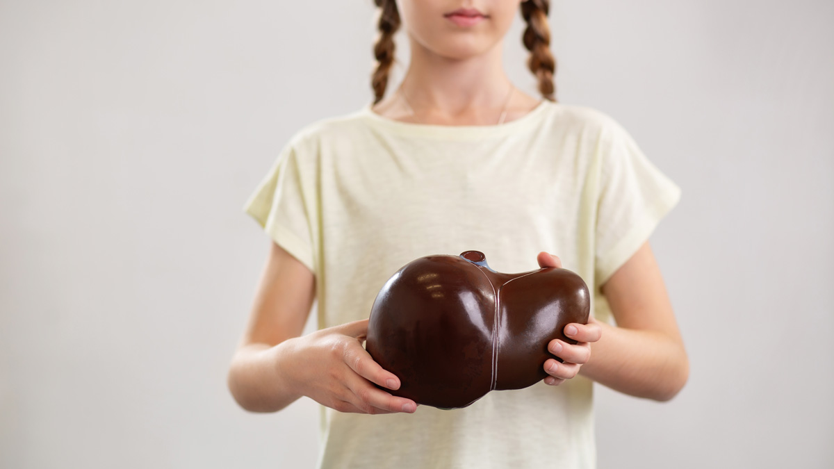 Young girl holding a model of a liver organ