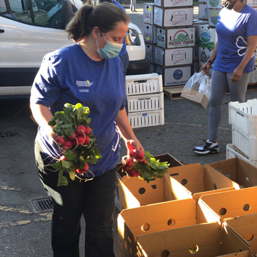 Volunteer packs produce boxes to share with community