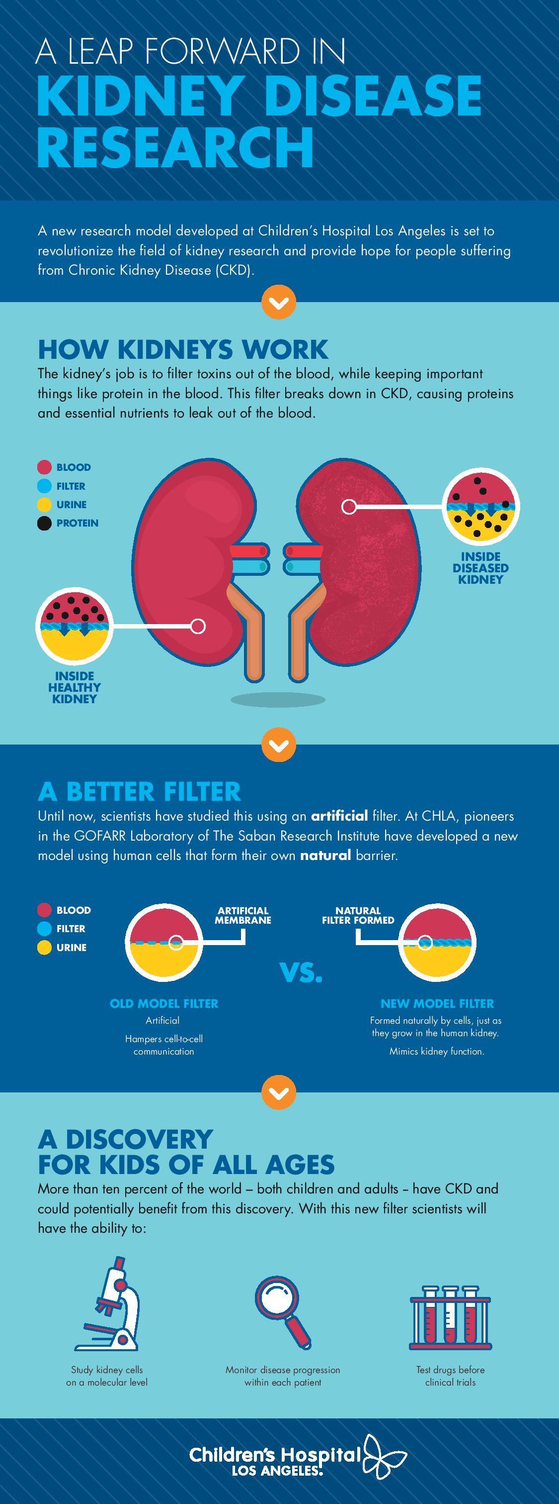 GOFARR infographic.jpg