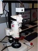 Leica_MZFLIII_Stereo_Microscope 50%.jpg