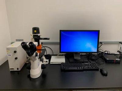 Nikon-TS100-Fluorescent-Microscope.jpg