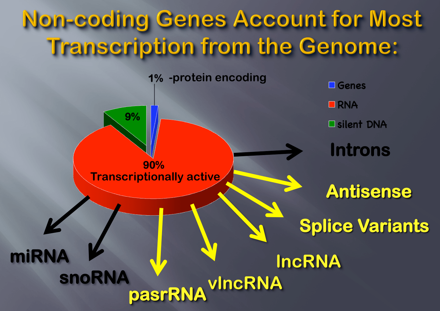 Triche.ncRNA genome.png