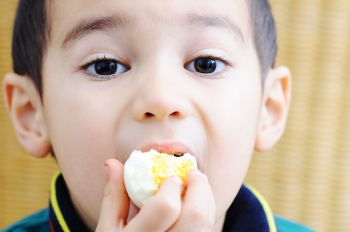 chla-high-calorie-nutrition-smart-bites.jpg