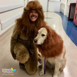 chla-therapy-dog-lion.jpg